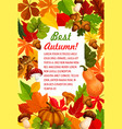 autumn leaf and pumpkin banner for fall season vector image vector image