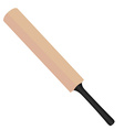Cricket bat vector image