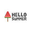 hello summer letters with watermelon background vector image