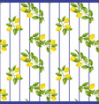 lemon striped seamless pattern vector image