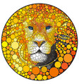 lion abstract wild cat animal vector image vector image