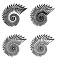 shell black line symbol vector image vector image