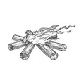 torch flame blowing in wind monochrome vector image vector image