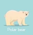 cute polar bear in sea ice desian on sky blue vector image