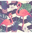 Seamless pattern with flamingo birds and vector image vector image