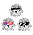 set portraits dogs in glasses a collection vector image vector image
