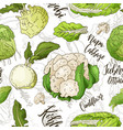 sketched vegetables background seamless vector image vector image