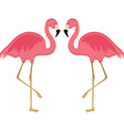 Two pink flamingo vector image vector image