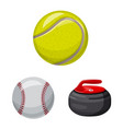 design of sport and ball sign set of sport vector image