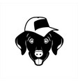 funny dog face with hat vector image