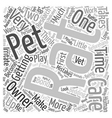Pet Rat Care The Top 10 Mistakes Of New Rat Owners vector image vector image