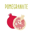Pomegranate isolated on white vector image vector image