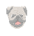 Pug portrait abstract isolated vector image vector image