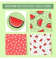 Seamless hand drawn watermelon patterns set vector image vector image