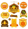 Set of honey and bee labels badges emblems vector image