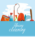 spring cleaning design vector image vector image