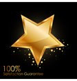 100 satisfaction guarantee vector image vector image