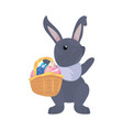 bunny egg easter vector image vector image
