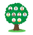 cartoon family tree infographics concept card vector image vector image