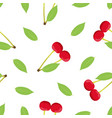 cherry seamless pattern isolated on white vector image