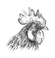 line sketch rooster head vector image vector image