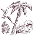 palm tree two seagulls and wave vector image