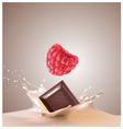 raspberry chocolate milk vector image vector image