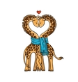 A pair of cute giraffes in love with a common vector image