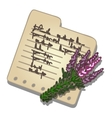 Bouquet lavender and note with recipe vector image