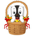 cute dog in a basket with red ribbon vector image vector image