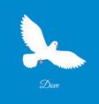 white dove free bird in sky paper pigeon vector image vector image