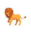 formidable lion wild predatory animal side view vector image vector image