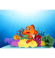 Happy clown fish with beautiful coral vector image vector image