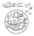 Sketch of seafood with fish and shrimps vector image