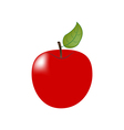 Apple Fruit Icon vector image vector image