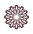 brown pattern flower mandala vector image vector image