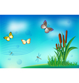 Butterfly dragonfly grass clouds summer vector image vector image