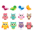 cute owl and birds set of vector image