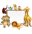 frame template with many wild animals vector image vector image