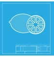 Fruits lemon sign White section of icon on vector image vector image