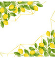 luxury lemon brunches background vector image