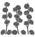 set of with cotton branches vector image