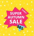 Super autumn sale banner vector image