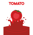Tomato juice falls Splash of tomato juice vector image