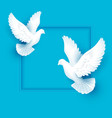 two white dove fly on blue background vector image vector image