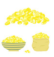 yellow corn seed vector image vector image