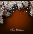 Christmas background with white fir twig