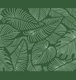 luxury floral nature background tropical pattern vector image