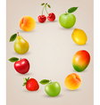 Set of healthy food fruit vector image vector image
