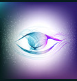 abstract color eye vector image